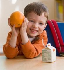 Lanches nutritivos para as crianças levarem para a escola.